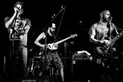 Diatomea_Band_BN2