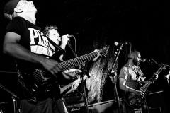 Diatomea_Band_BN4